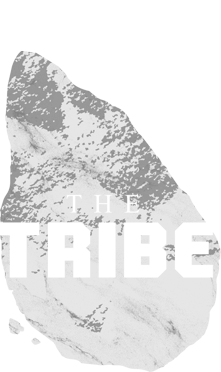The Tribe Devs